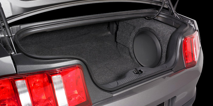 2010 Up Mustang Subwoofer